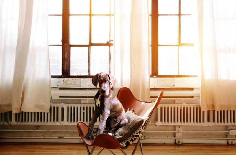 おしゃれで疲れない書斎椅子ランキング【おすすめ10選】